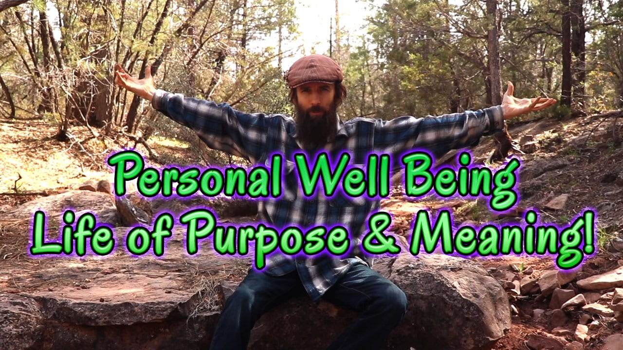 Personal Well Being Life Of Purpose Meaning