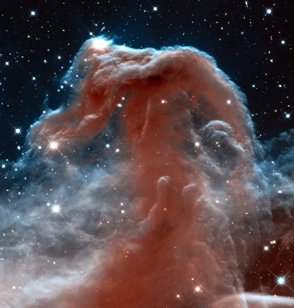 Horsehead Of A Different Color Dark Nebula Universe Space Photo Picture Image