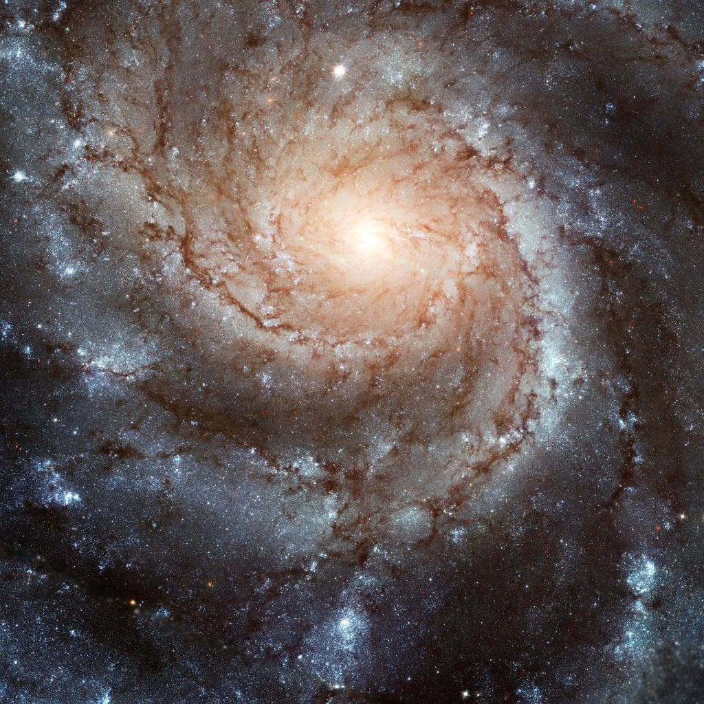M101 Bountiful Being Spiral Galaxy Universe Space Photo Picture Image