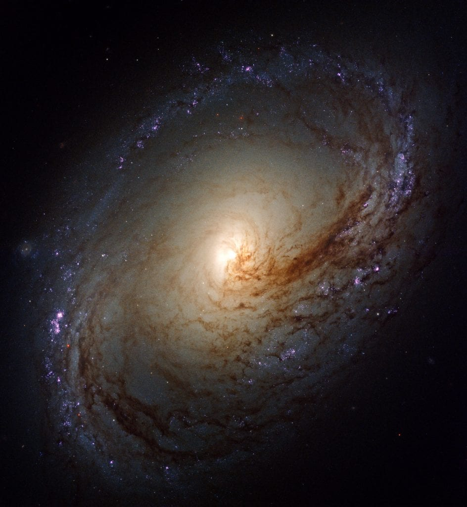 Spiral Galaxy NGC 3368 Universe Space Photo Picture Image